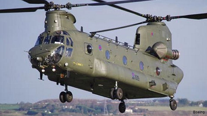 Three RAF Chinooks were sent to Nepal but were grounded in  Delhi India for more than a week and returned to the UK without being used  after the Nepalese Government denied entry arguing would have damage the structurally weakened buildings.