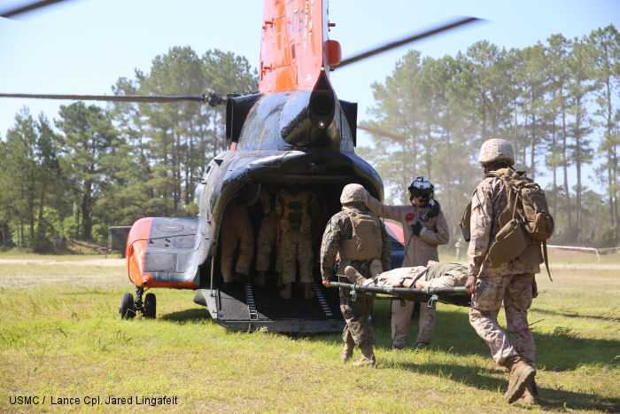 2nd Medical Battalion conducts mass casualty drills